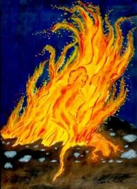 11 Feuer-Salamander 30ml Spray