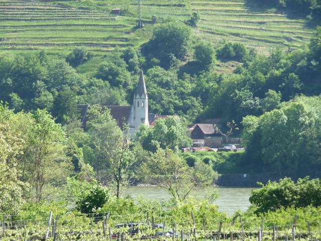 Donaublick Kopie