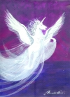 4 Pegasus 30ml Pipettenflasche